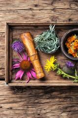 Natural healthy herbs