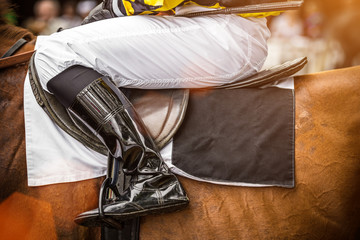 Race horse with jockey, close-up.