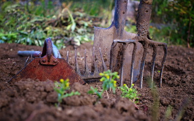 used gardening tools, shallow depth of field, selective focus, lomography effect