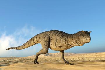 carnotaurus walking on desert