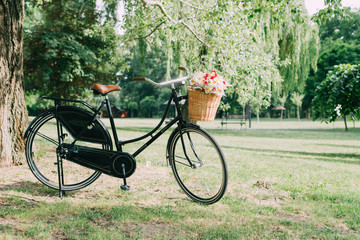 Old fashioned bicycle in the park