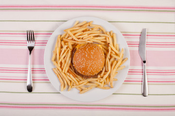 stock image of burger and french fries on white plate. diet conceptual