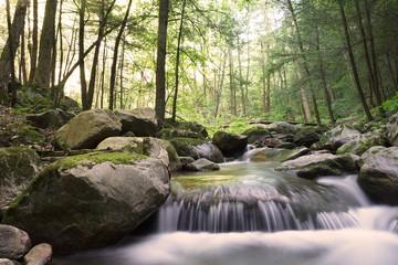 Cascade Brook in North Adams, Massachusetts.