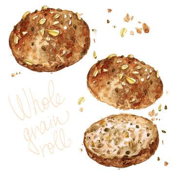 Whole grain roll. Watercolor Illustration.