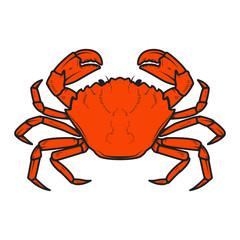 Crab icon isolated on white background. Design elements for logo, label, emblem, sign. Vector illustration