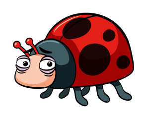 Sad ladybug on white background