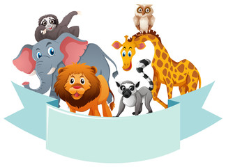 Banner template with wild animals
