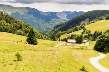 Papiers peints Melon paysage des crêtes du Jura