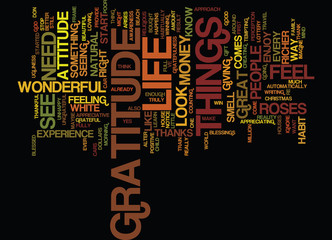 THE ATTITUDE OF GRATITUDE Text Background Word Cloud Concept