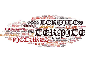 TERMITE PICTURES Text Background Word Cloud Concept
