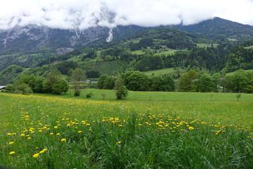 Région de Werfen 31