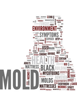 MOLD AND ILLNESS Text Background Word Cloud Concept