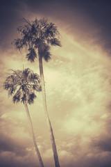Sepia Toned Retro Palms