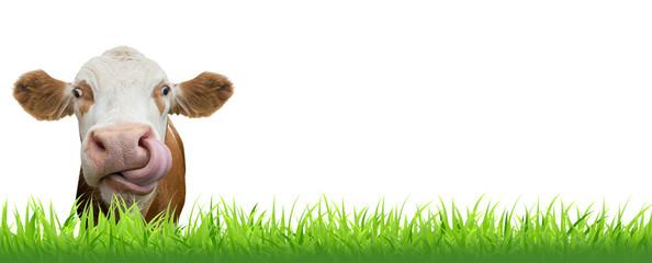 Witzige Kuh – Banner mit Gras