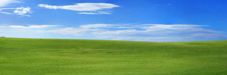 Panorama of the landscape - green grass and blue sky with small clouds