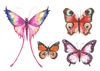Watercolor butterflies illustration