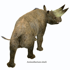 Arsinoitherium Mammal Tail with Font - Arsinoitherium was a herbivorous rhinoceros-like mammal that lived in Africa in the Early Oligocene Period.