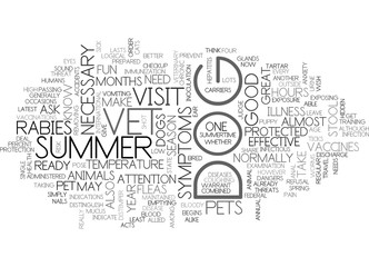 IS YOUR DOG READY FOR SUMMER Text Background Word Cloud Concept