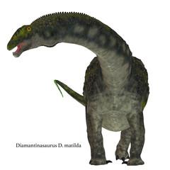 Diamantinasaurus Dinosaur on White with Font - Diamantinasaurus was a herbivorous sauropod dinosaur that lived in Australia during the Cretaceous Period.
