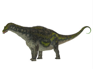 Diamantinasaurus Dinosaur Side Profile - Diamantinasaurus was a herbivorous sauropod dinosaur that lived in Australia during the Cretaceous Period.