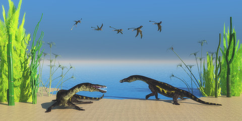 Nothosaurus Reptile Beach - A flock of Peteinosaurus flying reptiles watch as two Nothosaurus dinosaurs growl at each other on a Triassic beach.