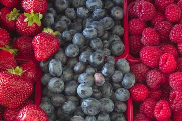 straberries blueberries and raspberries mix fruit berries