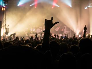 Music Festival Crowd Silhouette 1
