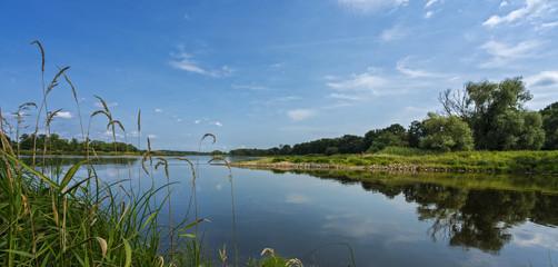 Der Fluss Oder im Brandenburger Land