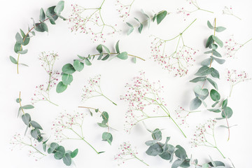 Flowers composition. Abstract pattern made of pink gypsophila flowers and eucalyptus branches on white background. Flat lay, top view