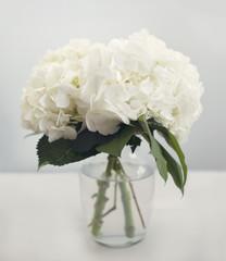 Zelfklevend Fotobehang Hydrangea White hydrangea flowers in a vase