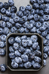 Freshly blueberries on dark background