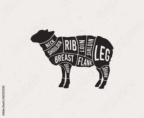 Meat Cuts Diagrams For Butcher Shop Scheme Of Lamb Animal