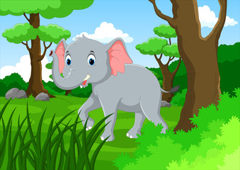 The young elephant walking in the lush forest