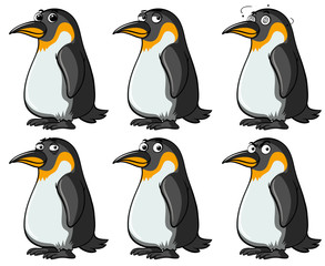 Penguins with different facial expressions