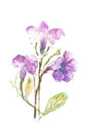 Abstract bloom purple flowers