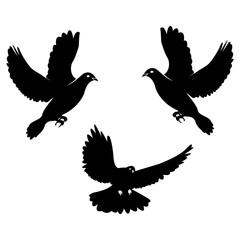 Black dove. Icon isolated on white.  logo template set