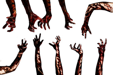 Halloween theme:Blood zombie hands on white background , zombie, demon, killer, maniac with clipping path.