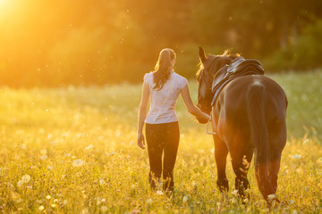Backview of young woman walking with her horse in evening sunset light