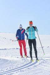 Doppelstock-Schub beim Langlauf