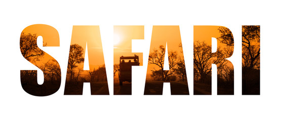 Safari word sunset silhouette