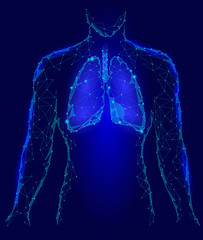 Human Lungs Internal Organ. Respiratory system Inside Body Silhouette. Low Poly 3d Connected Dots Triangle Polygonal Design. Blue Color Background Vector Illustration