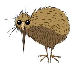 Cartoon image of kiwi bird. An artistic freehand picture.