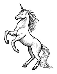 Cartoon image of unicorn. An artistic freehand picture.