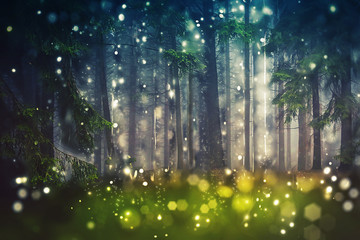Forest Trees, Wood Glade - Mystic, Bokeh, Lens Flares, Camera Blur - Sunlight Wall mural