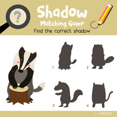 Shadow matching game of Badger animals for preschool kids activity worksheet colorful version. Vector Illustration.