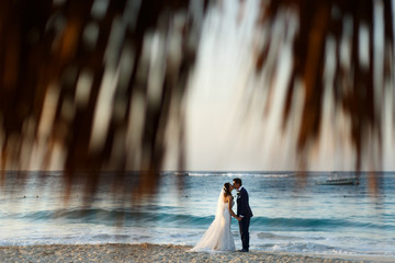 Look through the palm leaves at wedding couple kissing on the beach