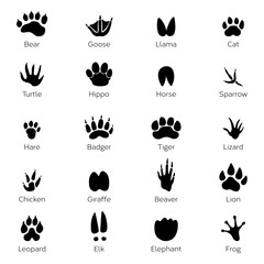 Different footprints of birds and animals. Vector monochrome pictures on white background