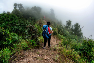 Spot focus Tourists are walking downhill on December 26,2015 in Chiangmai,Thailand.