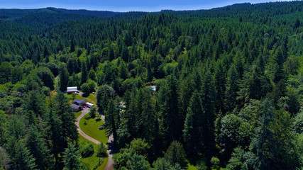 Farm and forest in the Oregon counrtyside