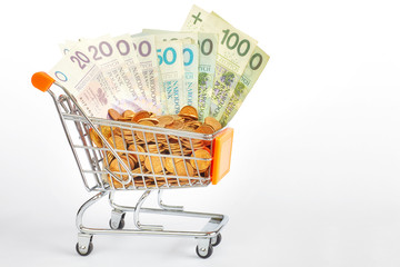 Shopping cart filled with polish zloty bills and grosz coins.